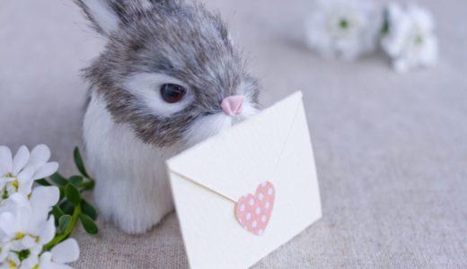 夢見る恋ウサギ